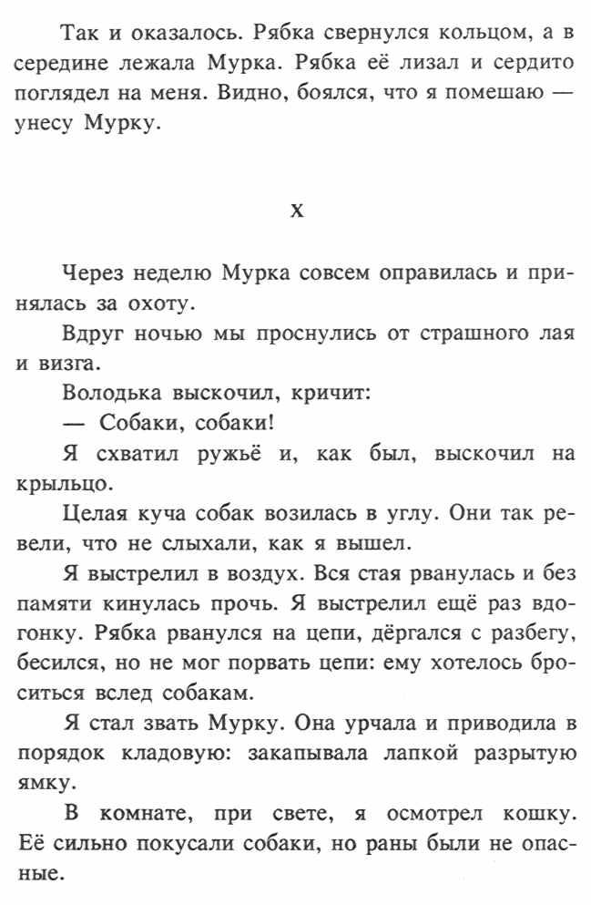Index of /books/koshka